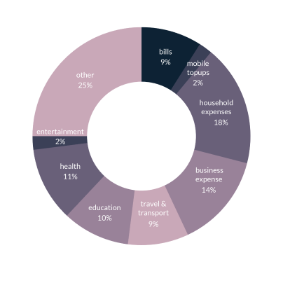 Donut chart showing major reasons people take loan using Tez Financial Services