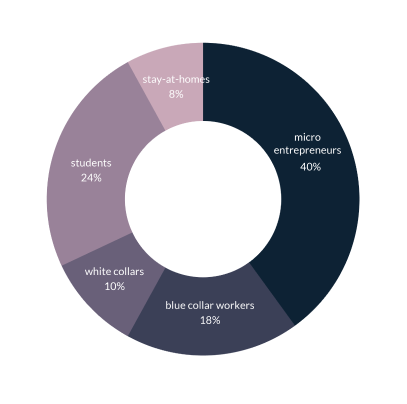 Donut chart showing which segments of society are Tez Financial Services users